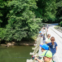 A group of kids holding their fishing poles over the side of the wooden entrance bridge.